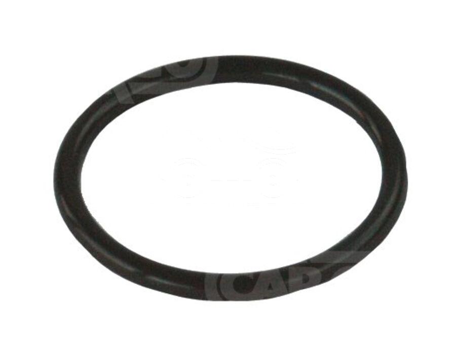 Кольцо уплотнительное KZN0075
